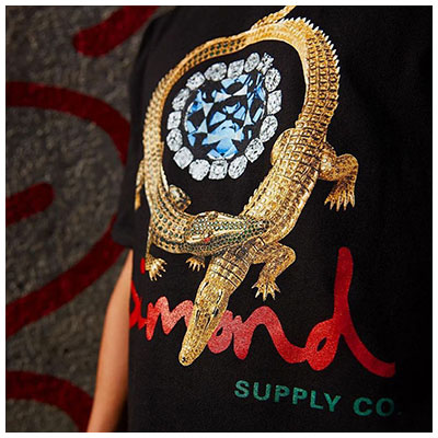 Diamond Supply Co Fall Winter